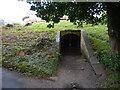 NT9952 : Ice house on Bank Hill, Berwick by Stephen Craven