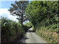 SN0717 : Lane near Llawhaden by PAUL FARMER