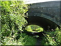 SK4453 : Route of the Pinxton Arm, Cromford Canal by Christine Johnstone