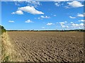 NT9147 : Ploughed field west of Emerick Farm by Andrew Curtis