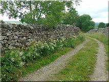 SE0064 : High Lane into Grassington by Carroll Pierce