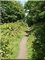 SO7844 : Footpath and former railway trackbed by Philip Halling