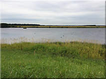 NZ2796 : Druridge Pools Wildlife Reserve by John Allan