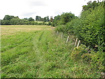 SP7103 : Field between New Park and Thame Park by David Hawgood