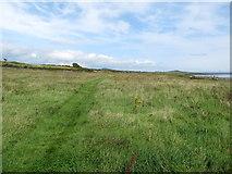 J6246 : View North along the Ballyquintin coastal path by Eric Jones