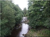 NY9038 : The River Wear by JThomas