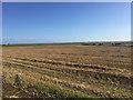 NU0841 : Field of stubble, Fenham by John Allan
