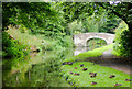 SO8480 : Canal north-east of Cookley in Worcestershire by Roger  Kidd