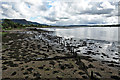 NS4074 : Remains of timber ponds by Mick Garratt