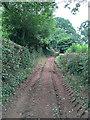 SY0484 : Shortwood Lane by Hugh Craddock