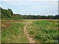 TQ3038 : Waste land near M23 junction 10 by Robin Webster