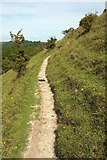 ST6601 : Path along Giant Hill by Derek Harper