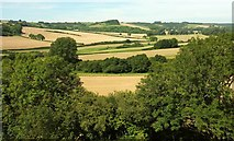 ST6601 : Farmland in the Cerne valley by Derek Harper