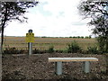 TL9253 : B17 Crash Site Memorial by Adrian S Pye