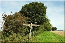 ST6702 : Signpost on the Wessex Ridgeway by Derek Harper