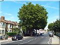 TQ4082 : Barking Road, Plaistow by Malc McDonald