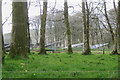 SX8151 : New land-use: a solar farm near The Beacon, Oldstone by Robin Stott