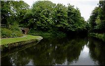 SJ9001 : Aldersley Junction near Oxley, Wolverhampton by Roger  Kidd