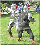 TL0506 : The Knight in action on Blackbirds Common, Boxmoor by Chris Reynolds