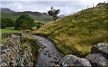 NY2101 : The River Esk. by steven ruffles