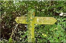 ST6601 : Footpath signpost, Cerne Abbas by Derek Harper