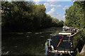 TQ3685 : River Lea Navigation beside Hackney Marsh (3) by Chris Heaton