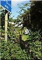 SX8659 : Footpath, Yalberton Industrial Estate by Derek Harper