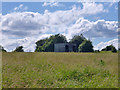 TQ5292 : Shed, field west of Straight Road by Robin Webster