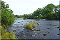 NY9170 : River Tyne at Chesters Fort by Des Blenkinsopp