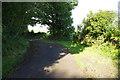 SN0701 : Lane to Coppybush by Stephen McKay