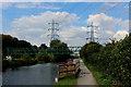 TQ3592 : Along the Towpath beside River Lea Navigation by Chris Heaton