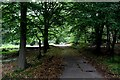 TQ4399 : Lodge Road in Epping Forest by Chris Heaton