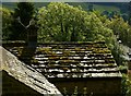 SE1665 : Roof with moss by Alan Murray-Rust