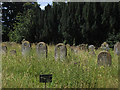 SE9755 : St Mary, Kirkburn - graveyard by Stephen Craven