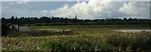 SK8707 : View of St. Edmund's Church, Egleton from Snipe Hide in Rutland Water Nature Reserve by Robert Lamb