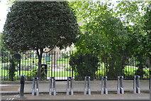 TQ2580 : Leinster Square by N Chadwick