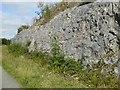 SK1461 : Rocky wall of a cutting, near Hartington Moor Farm by David Smith