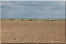 TG5307 : Beach and dunes at Great Yarmouth by Oast House Archive
