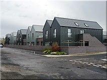 NJ9967 : New housing on Quarry Road by John M