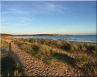 SS8476 : Newton Bay by Alan Hughes