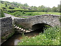 SX8162 : Bridge and brook in Littlehempston by Tony Atkin