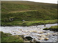 NY8500 : Birth  of  the  River  Swale by Martin Dawes
