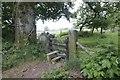 SO0464 : Stile in the Churchyard by Bill Nicholls