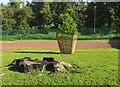 SX8964 : Tree stump, Raleigh Close by Derek Harper