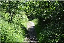 TL5234 : Harcamlow Way by N Chadwick