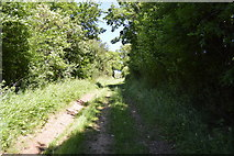 TL5334 : Track to Bromley Farm by N Chadwick