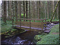 NT3308 : Footbridge over the Aithouse Burn by Karl and Ali