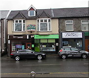 SS9992 : Pooch Palace, Llwynypia Road, Tonypandy by Jaggery
