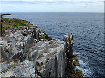 NU2135 : Cliffs on the south side of Inner Farne by John Allan