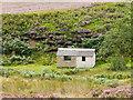 SE1152 : Shooting hut beside Loftshaw Gill. by Trevor Littlewood